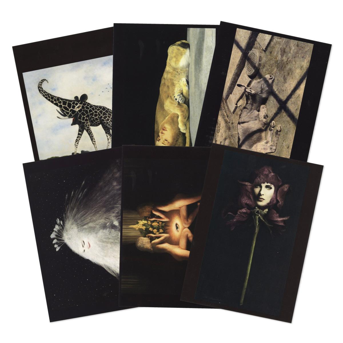 伊豫田晃一 ポストカードコレクション2, IYODA Koichi Postcard Collection 2